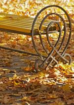 Herbstaktion von .comdirect